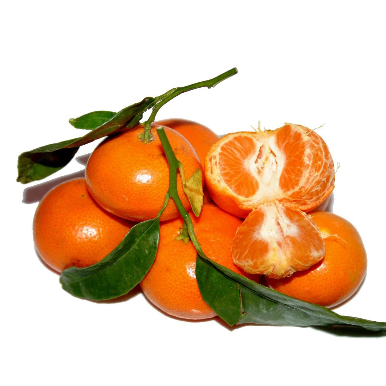 Mandarina Nadorcott