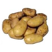 Ons_Aanbod_Aardappelen_Polders