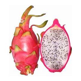 Ons_Aanbod_Exoten_Pitaja_dragonfruit
