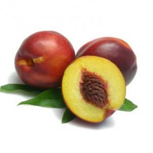 Nectarinen