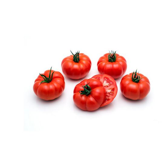 rebelion tomaat