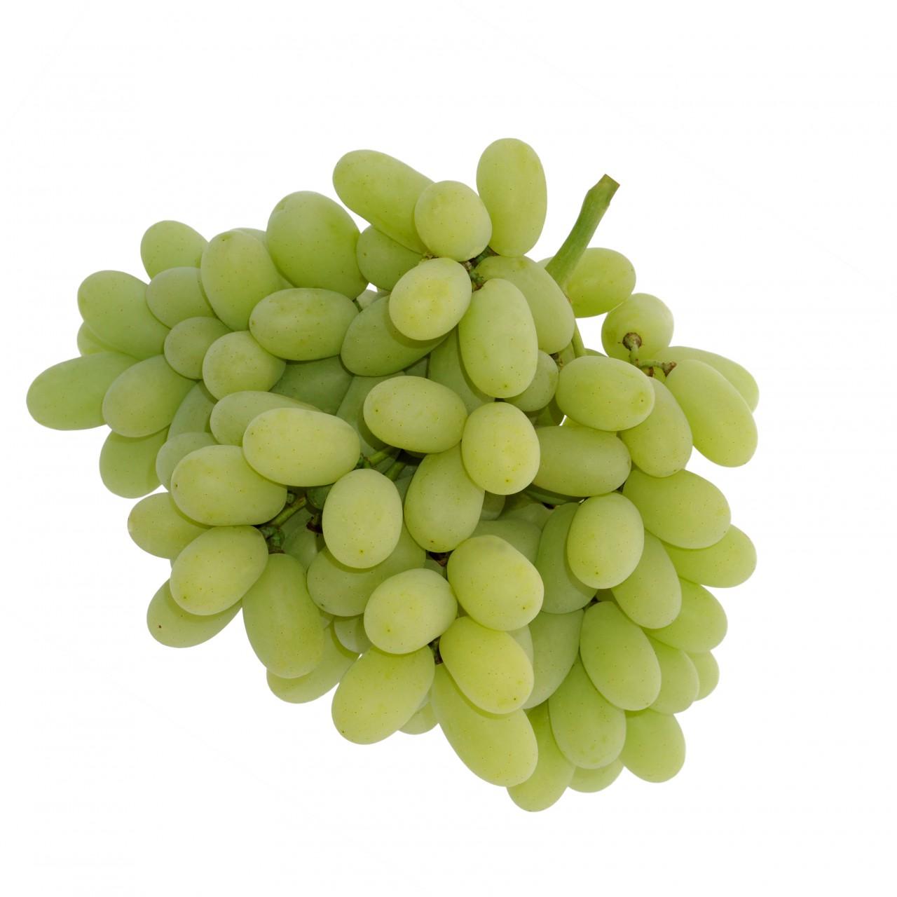 Pristine Seedless