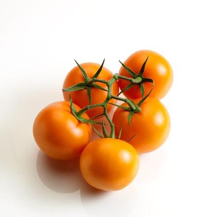 trostomaat oranje